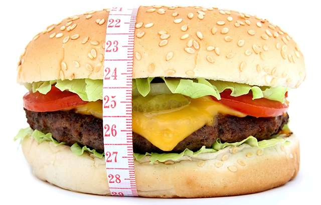 Researchers find link between a high fat diet, obesity and cardiovascular disease risk