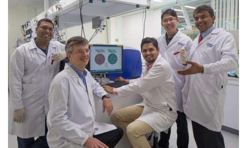 Scientists discover novel vulnerabilities in dengue virus