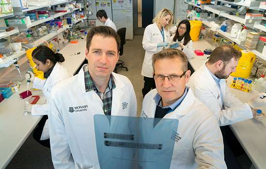 Scientists make critical insights into T-cell development
