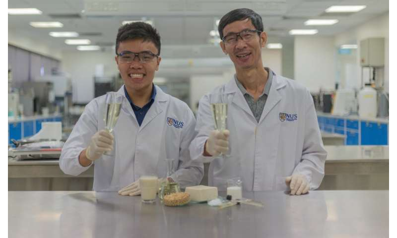 Researchers develop world's first alcoholic beverage made from tofu whey