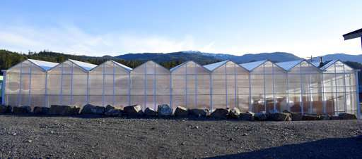 Alaska counters lack of fresh veggies with greenhouse guide