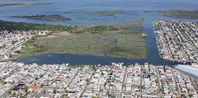 Coastal wetlands dramatically reduce property losses during hurricanes