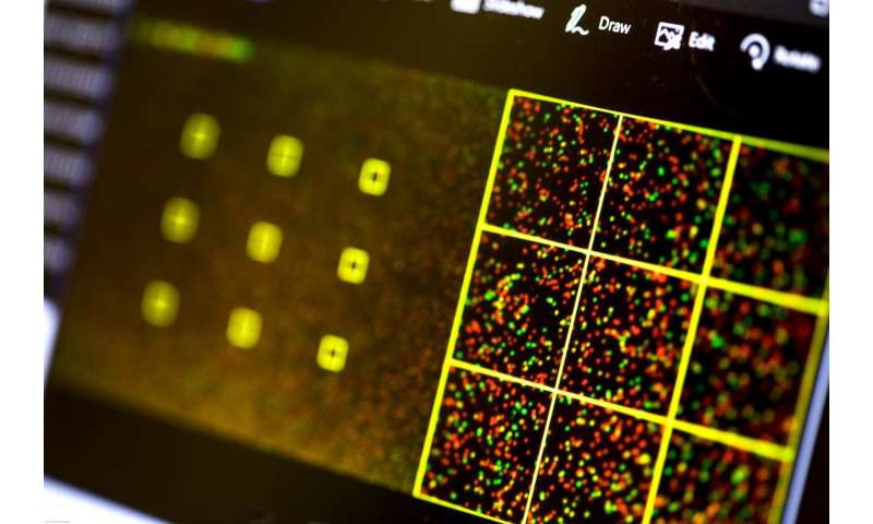 DNA sequencing tools lack robust protections against cybersecurity risks