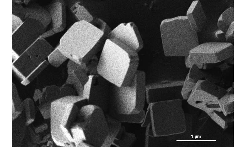 Electrode materials from the microwave oven