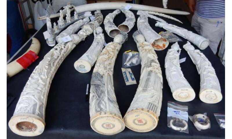 Fighting ivory trafficking with forensic science