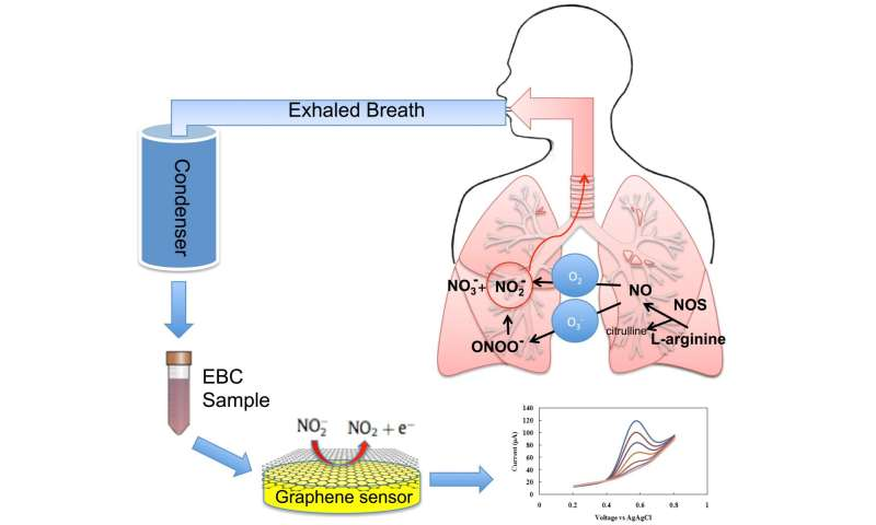 Graphene-Based Sensor Could Improve Evaluation, Diagnosis And Treatment Of Asthma - Featured Graphene Medical