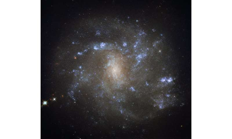 Hubble spots a barred lynx spiral
