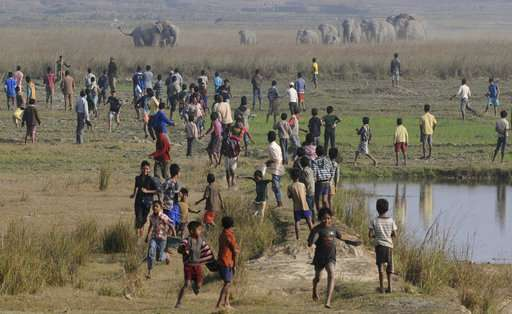 Human-wildlife conflict in India: 1 human killed every day
