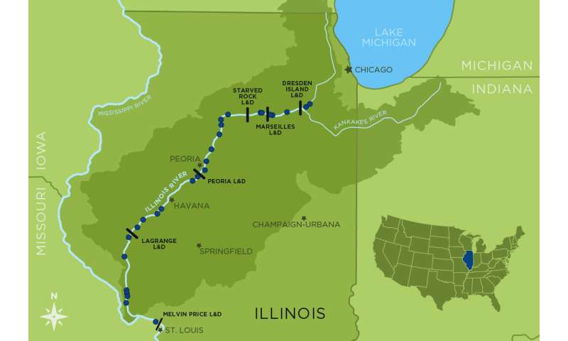 Illinois sportfish recovery a result of 1972 clean water for Illinois river fishing report