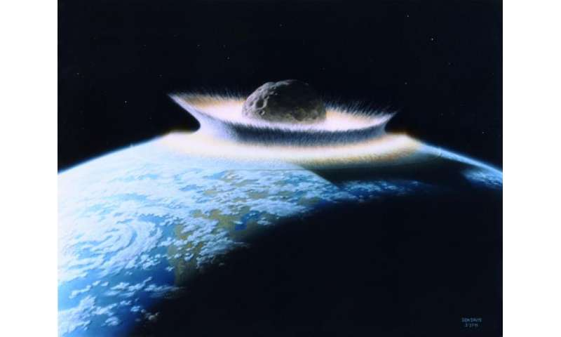 Life evolves adaptions to microgravity