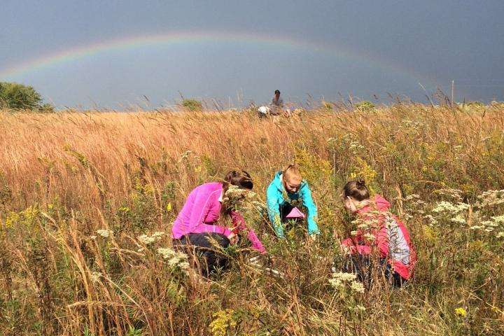 Long-term study aims to understand prairie ecology after farmland is forsaken