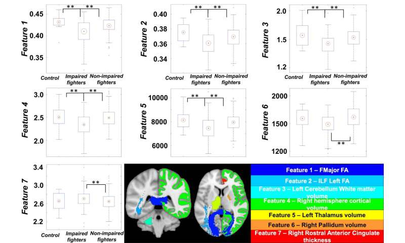 MRI may help predict cognitive impairment in professional fighters