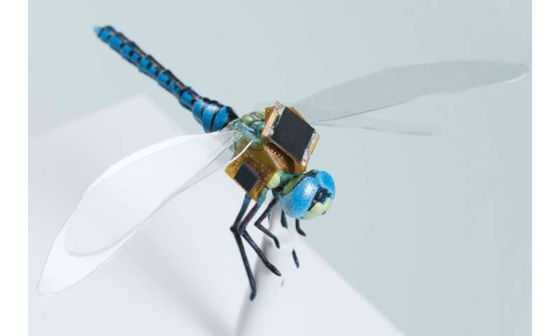 Researchers are looking at backpack guidance system on the dragonfly