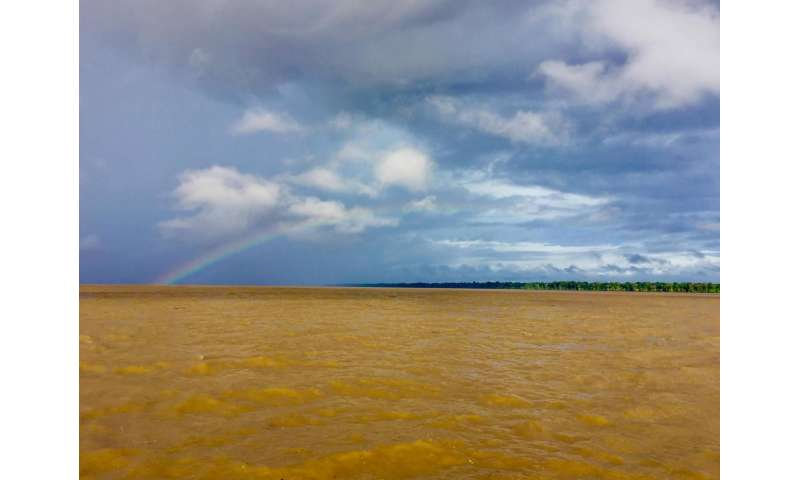 Study finds Amazon River carbon dioxide emissions nearly balance terrestrial uptake