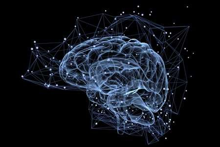 The human brain can 'see' what is around the corner