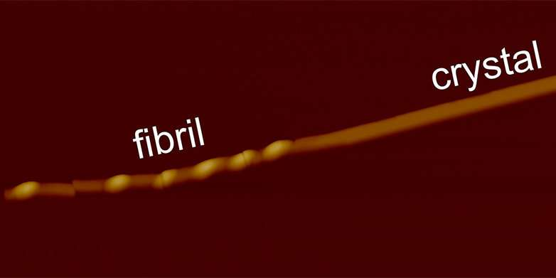 Transforming fibrils into crystals