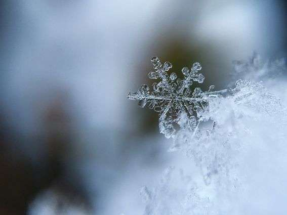Uncovering the answer to an age-old question: How do snowflakes form?