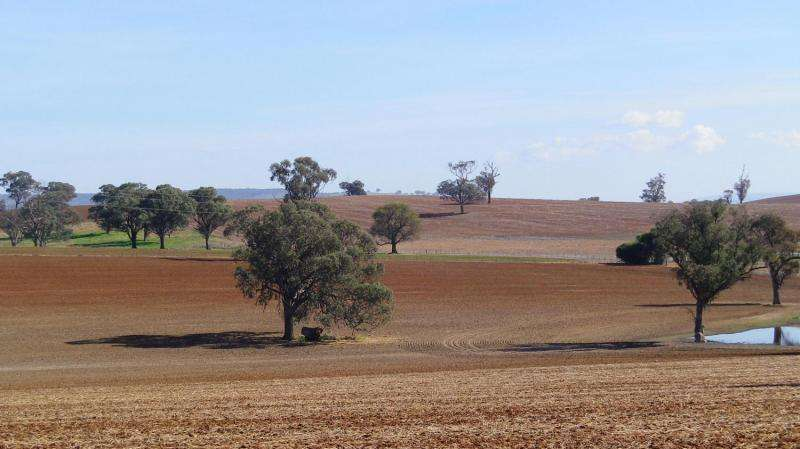 Varied predictions for soil organic matter as climate changes