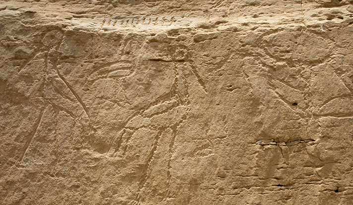 Archaeologists discover earliest monumental Egyptian hieroglyphs