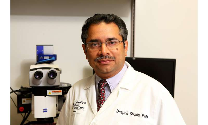Researchers at UIC identify master molecule behind corneal inflammation