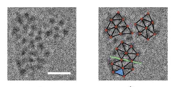 Crystallization made crystal clear