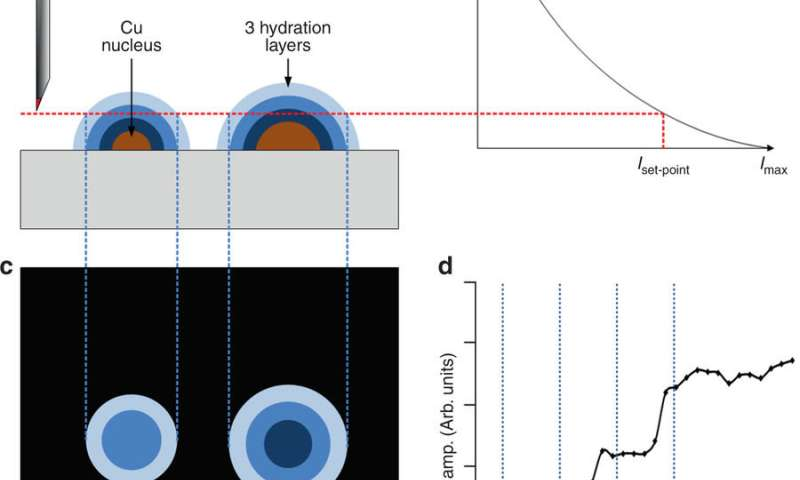 Electroplating: The birth of a single nucleus caught in camera