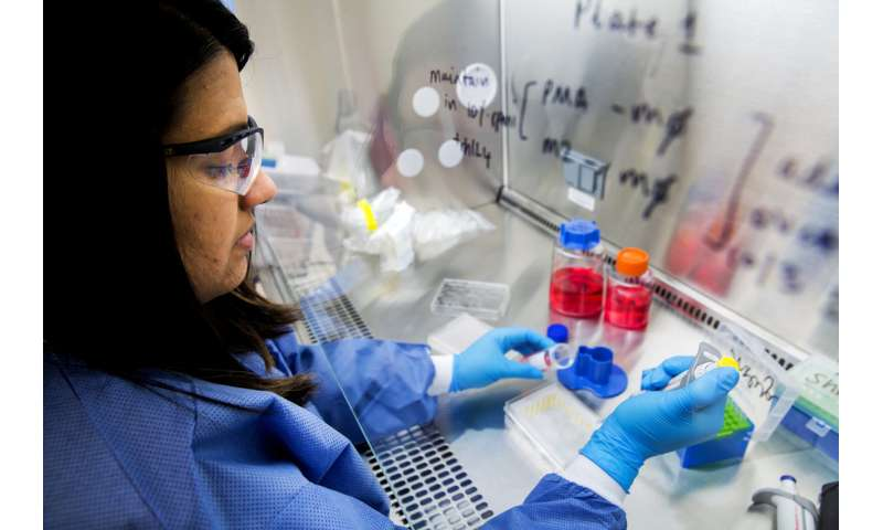 Fighting cancer with cancer: 3-D cultured cells could drive precision therapy