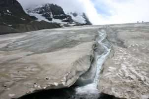 The glaciers are going