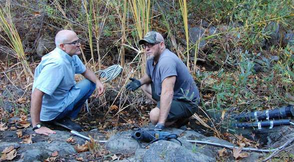 Researchers are working to improve the health of the San Diego River's mountainous tributaries