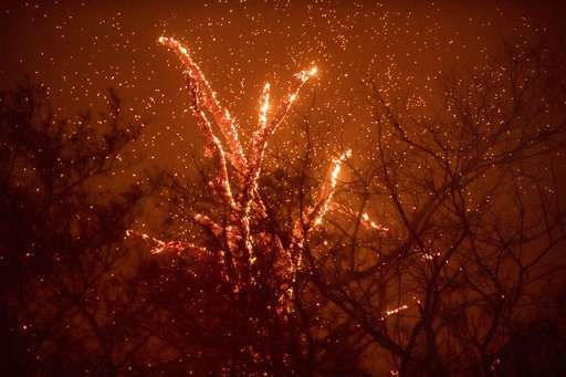 California sent fire danger text alert to 12 million people