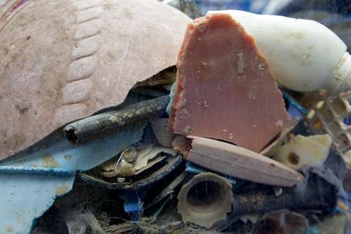 Dutch group says it will soon start cleaning up ocean trash