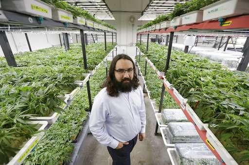 Growing pot industry offers breaks to entice minorities