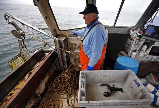 New rules for lobstering in southern New England up for vote