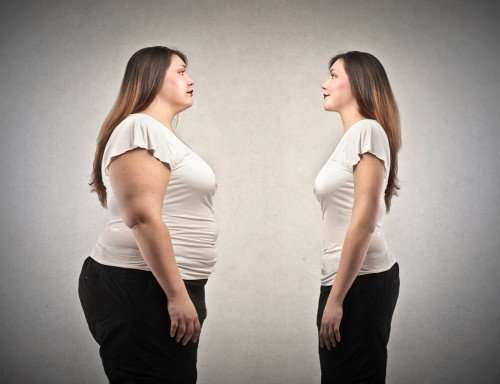 Researcher considers social reactions to obesity