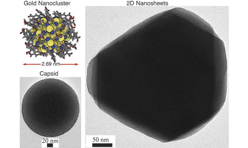 Researchers discover self-assembling 2-D and 3-D materials