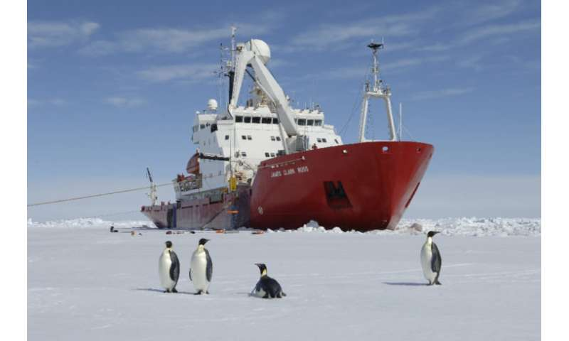 Scientists to visit hidden Antarctic ecosystem after giant iceberg calving