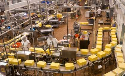 Researchers unlock cheesemaking secret