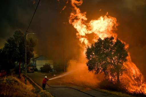 A firefighter tackles a blaze close to the village of Pucarica in Abrantes, Portugal