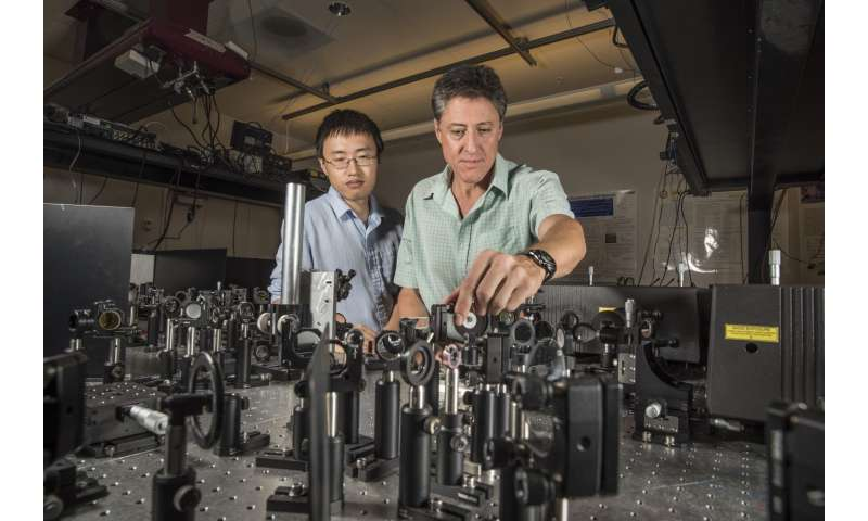 Nanotechnology experts create first terahertz-speed polarization optical switch