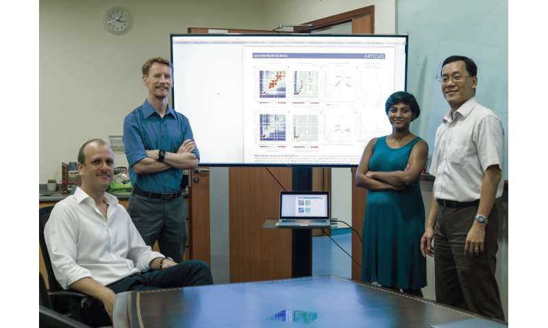 NUS researchers unravel new insights into how the brain beats distractions to retain memories