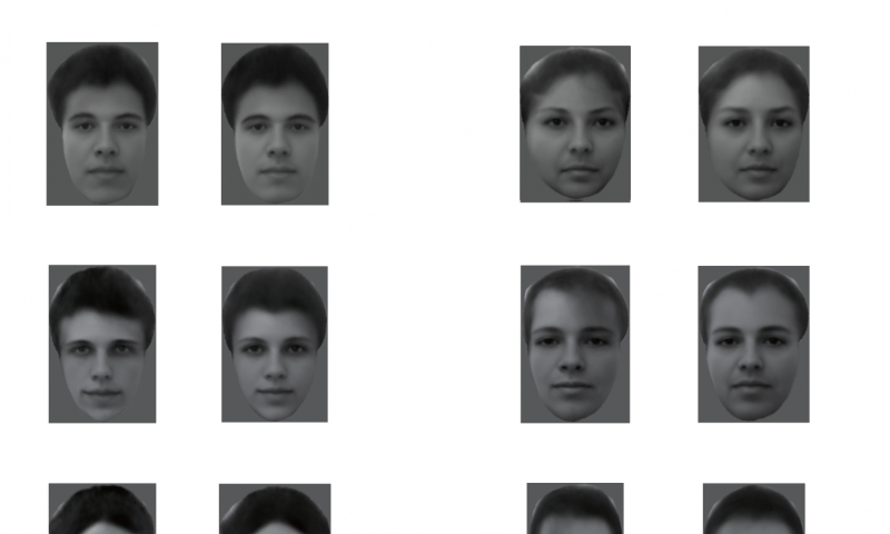 Researchers decipher the enigma of how faces are encoded in the brain