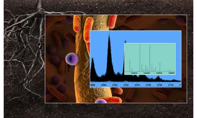 Unraveling the molecular complexity of cellular machines and environmental processes
