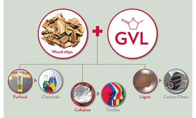 Researchers convert 80 percent of biomass into high-value products via new strategy