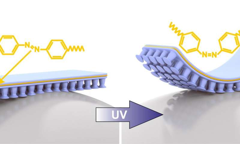 gecko inspired adhesive can attach and detach using uv light