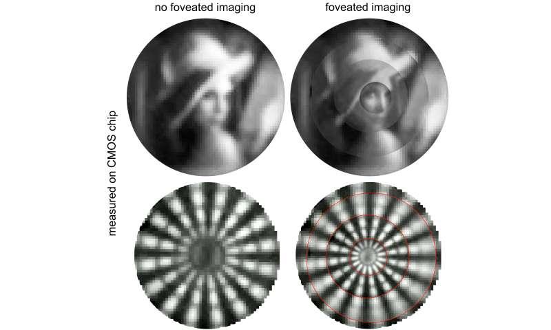 Tiny foveated imaging camera mimics eagle vision