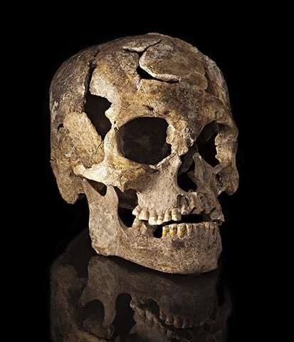 Study of ancient skulls suggest there may have been multiple migrations into the Americas