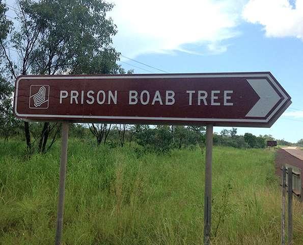 Dark tourism has grown around myth of prison tree