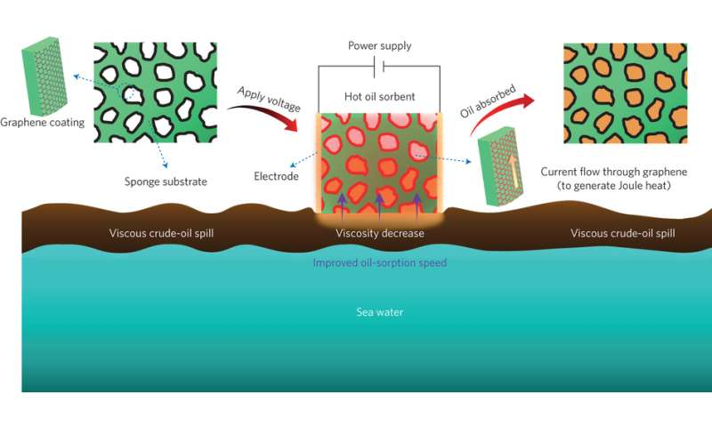 Wrapping sponges in graphene nanoribbons allows for Joule heating to help clean up oil spills