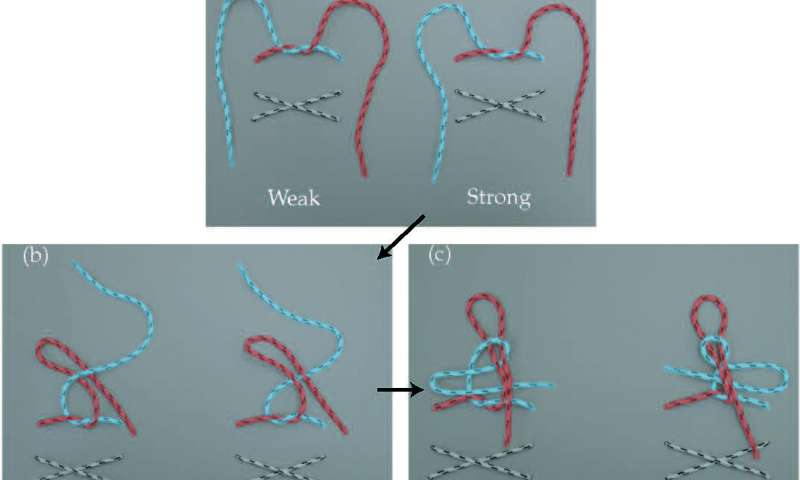 Shoe-string theory: Science shows why shoelaces come untied