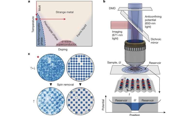 Harvard team creates a cold-atom Fermi–Hubbard antiferromagnet